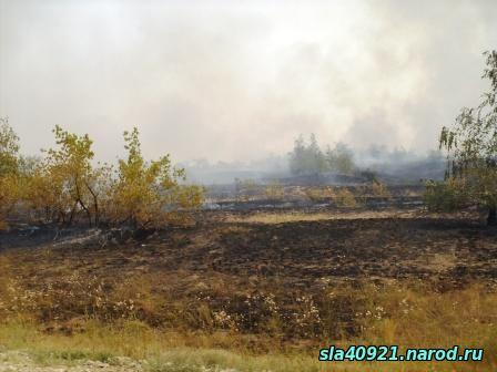 Лесной пожар близ с. Меловое